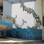 aqua_tree_djalouz_pesca